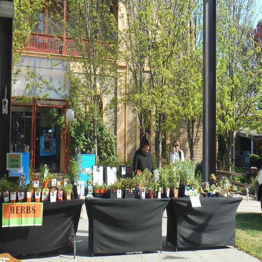 Clare Valleys – The Edible Garden