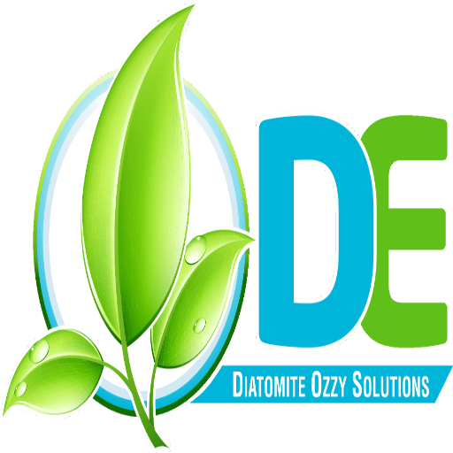D.E Ozzy Solutions